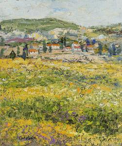 Oliviers en Provence